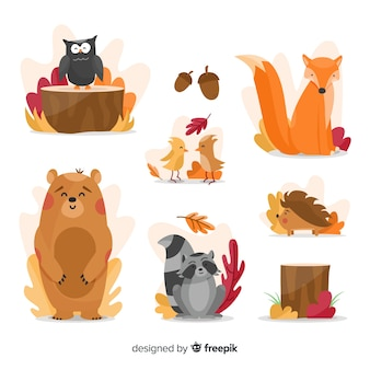 Collezione di animali foresta autunnale piatta