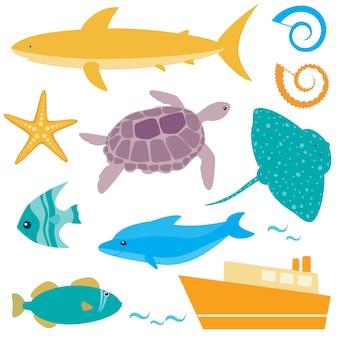 Collezione di animali marini