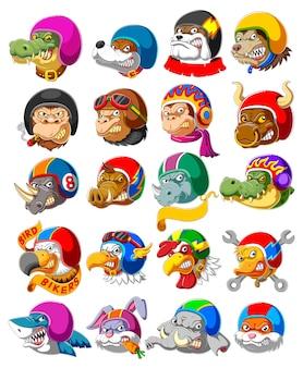 Collezione di animali selvatici che indossa il casco