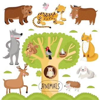 Collezione di animali selvatici disegnati a mano