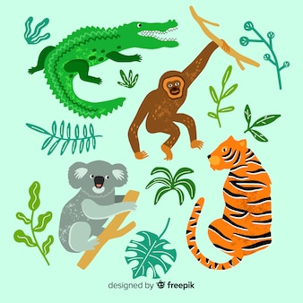 Collezione di animali tropicali disegnati a mano
