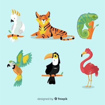 Collezione di animali tropicali piatta