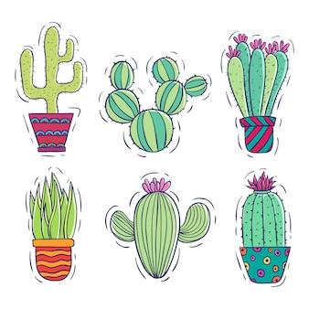 Collezione di cactus con stile colorato doodle su bianco