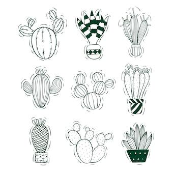 Collezione di cactus con stile schizzo o doodle
