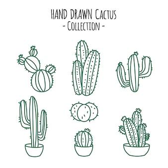 Collezione di cactus disegnati a mano