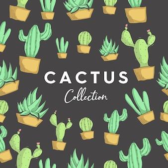 Collezione di cactus vettoriale