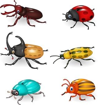 Collezione di coleotteri divertente cartone animato