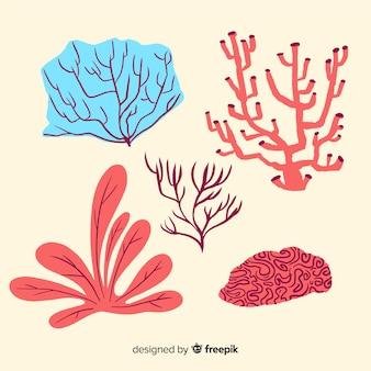 Collezione di coralli sott'acqua disegnata a mano