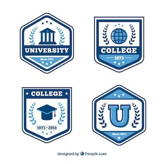 Collezione di distintivi di laurea in stile piatto