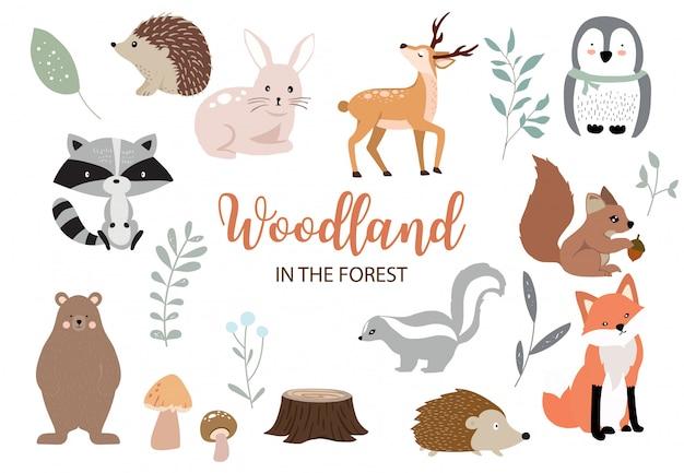 Collezione di elementi del bosco carino con orso, coniglio, volpe, puzzola, funghi e foglie