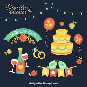 Collezione di elementi di nozze colorati