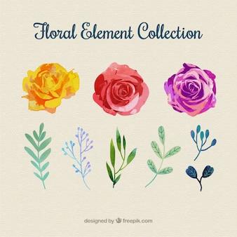 Collezione di elementi floreali colorati con design piatto