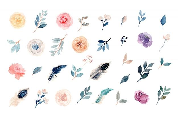 Collezione di elementi floreali e piuma dell'acquerello