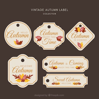Collezione di etichette autunnali creativi