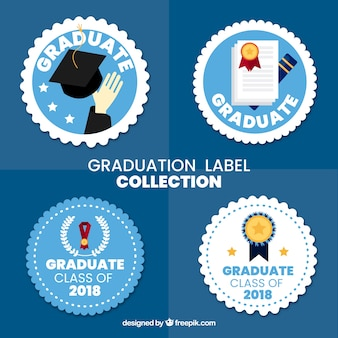Collezione di etichette di laurea con design piatto
