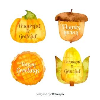 Collezione di etichette di ringraziamento dell'acquerello
