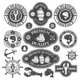 Collezione di etichette nautiche, illustrazioni di frutti di mare ed elementi disegnati