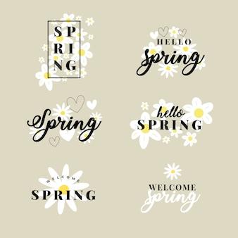 Collezione di etichette primavera disegnati a mano