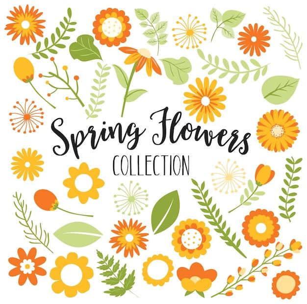 Collezione di fiori primavera o autunno