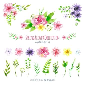 Collezione di fiori primaverili ad acquerello