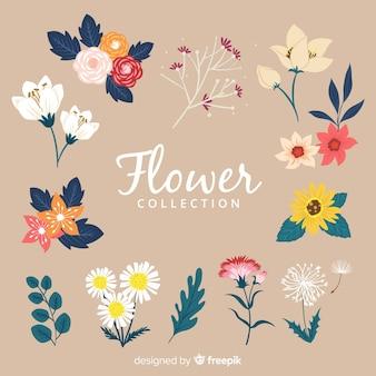 Collezione di fiori