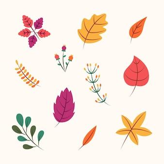 Collezione di foglie autunnali design piatto