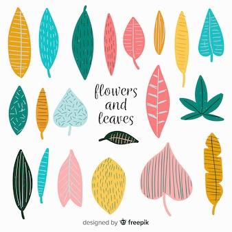 Collezione di foglie disegnate a mano