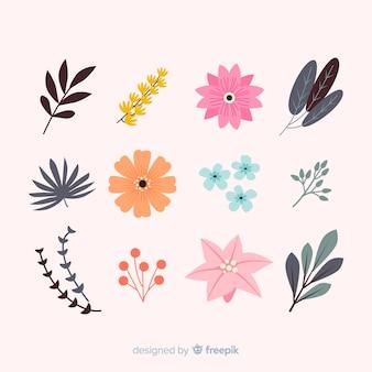 Collezione di foglie e fiori