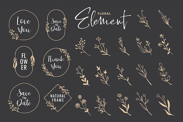 Collezione di ghirlanda floreale disegnata a mano bella