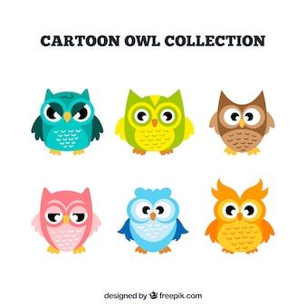 Collezione di gufi cartoon in diversi colori