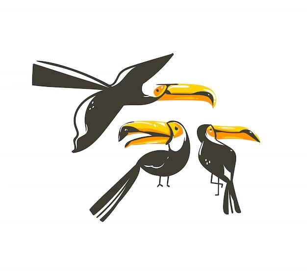 Collezione di illustrazioni di decorazione grafica di ora legale del fumetto astratto disegnato a mano insieme arte con uccelli tucano della foresta pluviale tropicale esotica su priorità bassa bianca
