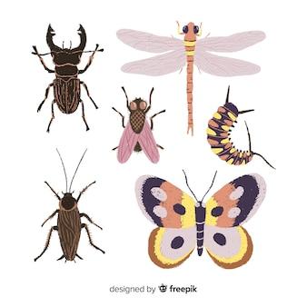 Collezione di insetti disegnati a mano realistico