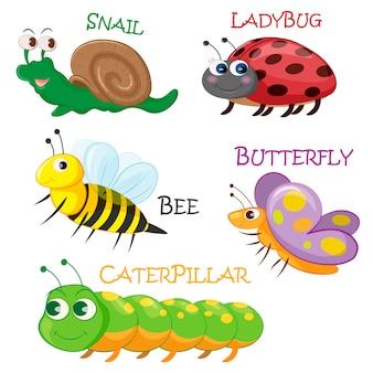 Collezione di insetti primaverili dei cartoni animati