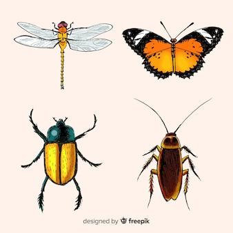 Collezione di insetti realistici