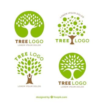 Collezione di loghi dell'albero in stile piatto