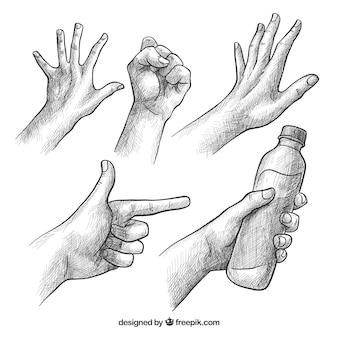 Collezione di mani con diverse pose in stile realistico