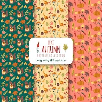 Collezione di modelli d'autunno in stile piatto