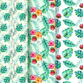 Collezione di modelli tropicali dell'acquerello