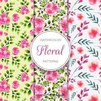 Collezione di motivi floreali dell'acquerello
