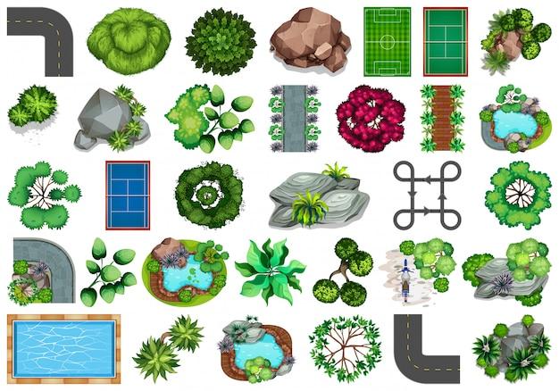 Collezione di oggetti a tema natura esterna ed elementi vegetali