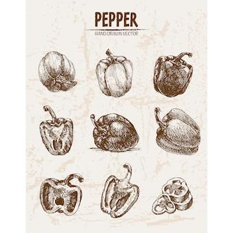 Collezione di peperoni disegnati a mano