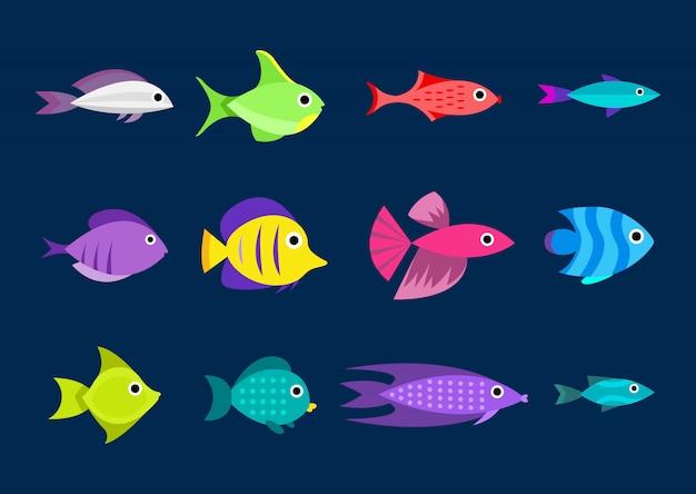 Collezione di pesci stile cartone animato un'illustrazione di dodici pesci differenti