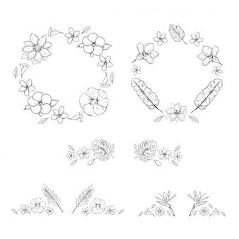Collezione di piante esotiche floreali monocromatiche di schizzo