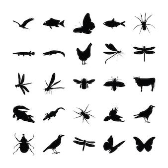 Collezione di pittogrammi di animali