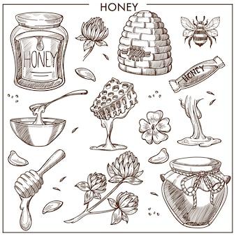 Collezione di prodotti di miele dolce