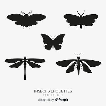 Collezione di sagome di insetti alati
