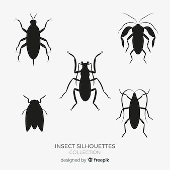 Collezione di sagome di insetti piatto