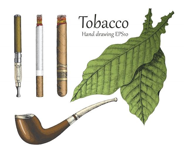 Collezione di tabacco disegno a mano stile vintage