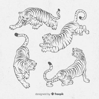 Collezione di tigri disegnate a mano