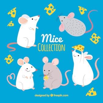 Collezione di topi disegnati a mano